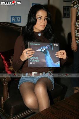 Celina Sizzles at Peta Calendar Launch