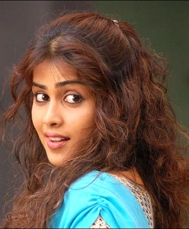 sweety the chick wallpapers. Today's Beauty Genelia D'Souza