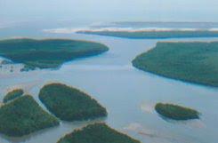 Conheça o Delta do Parnaíba, espetáculo raro da natureza