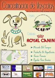 concentración mascotas mayo 2010