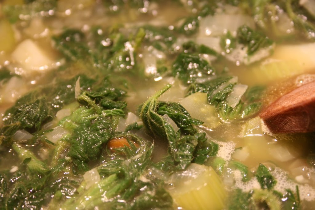 pheasant plucker nettle and wild garlic soup