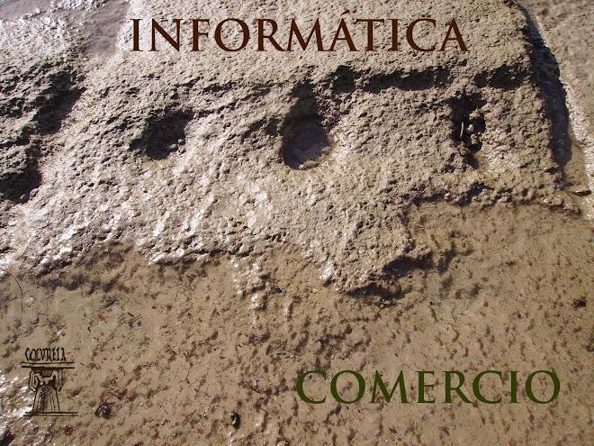 INFORMATICA DEL CICLO DE GRADO MEDIO DE COMERCIO