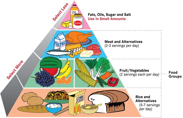 Method One: Healthy Food Pyramid