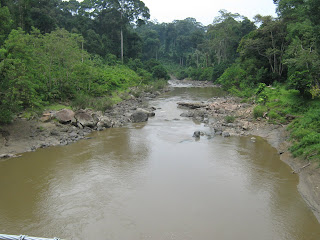 danum valley, segama river