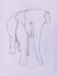 Menggambar Gajah   Belajar Menggambar