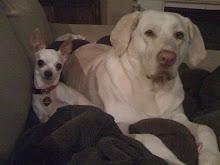 Lola & Gracie