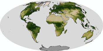 Cobertura Vegetal do Planeta