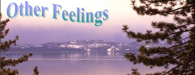 other feelings