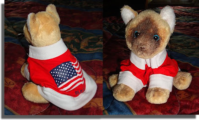 Sam in Patriotic Gear