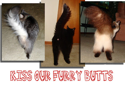 Kiss Our Furry Butts