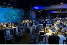 venue hire london aquarium