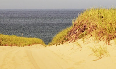 Race Point dunes