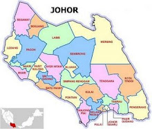 Kawasan Parlimen Johor