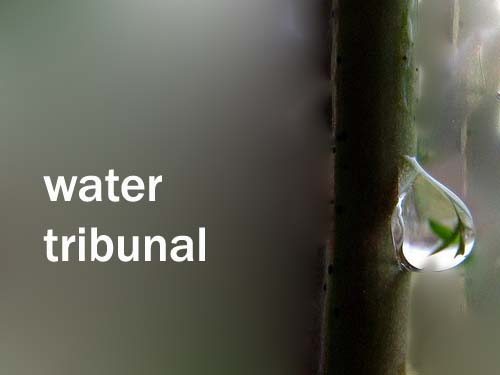 Water Tribunal