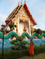 Monk gardening at Karon Temple, 5th December