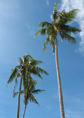 Blue Skies over Phuket, 25th May