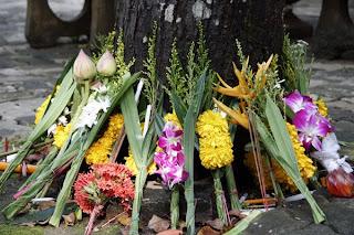 Flowers at Sam Kong Temple, Phuket