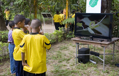 Kid watching a movie about butterflies