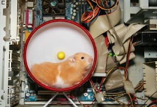 Hamster Powered Computer