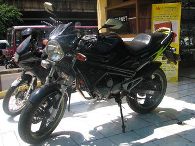 Honda Tiger 2009