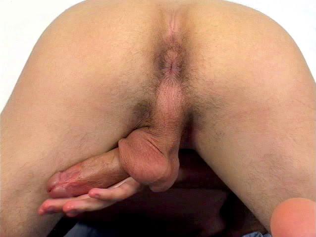 http://3.bp.blogspot.com/_BdMsVGzvDSs/S8iqFvomGhI/AAAAAAAAENw/vkB6x3gyqDQ/s1600/ho045.jpg