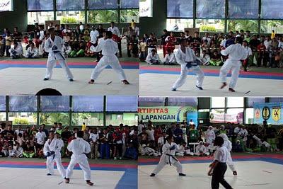 HASIL KEJUARAAN CABANG KARATE PORPROV VIII 2010 KALSEL DI KOTABARU