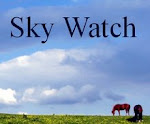 SKYWATCH BLOG