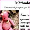Educateur, ce métier impossible - méthodologie DC2.1 éducateur spécialisé étude de situation DEES