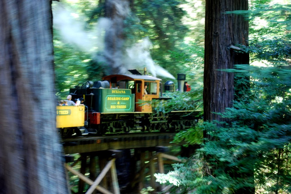 Dec 02, · Review of: Roaring Camp Steam Train Through Santa Cruz Redwoods. Enjoyed every minute of the train ride into the Redwood forest. Can you take a Lyft from Santa Cruz to roaring Camp Railroads. We are staying in Santa Cruz and won't have a car. September 28, |/5().