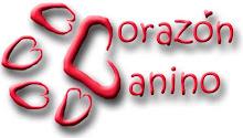 Para volver al blog de Corazón Canino sólo haz click