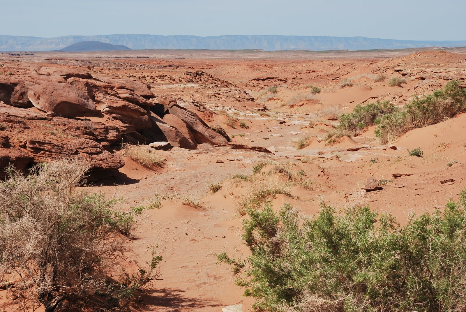 bend oregon daily photo a few weeks ago while ing the navajo nation my host took me to see the dinosaur tracks near tuba city arizona i had been skeptical from the moment i