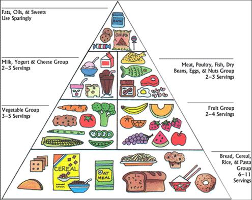 Worksheets Food Pyramid Guide 03igup healthy food pyramid for kids kids