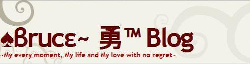 Bruce 828 Blog