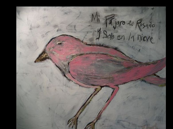 My Bird is Pink and Lost in the Snow
