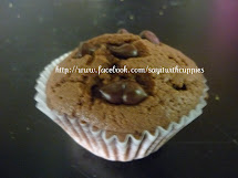 ChocolateChip Muffin