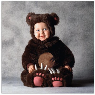 Cute baby like bear picture