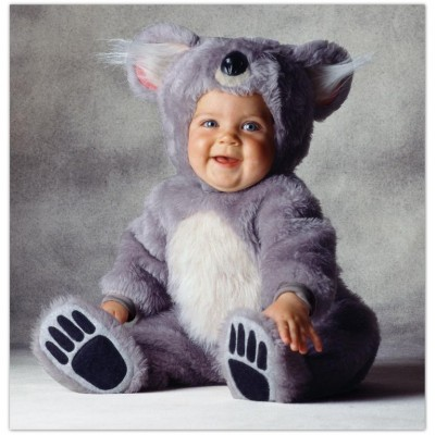 Cute baby like teddy bear dressing picture