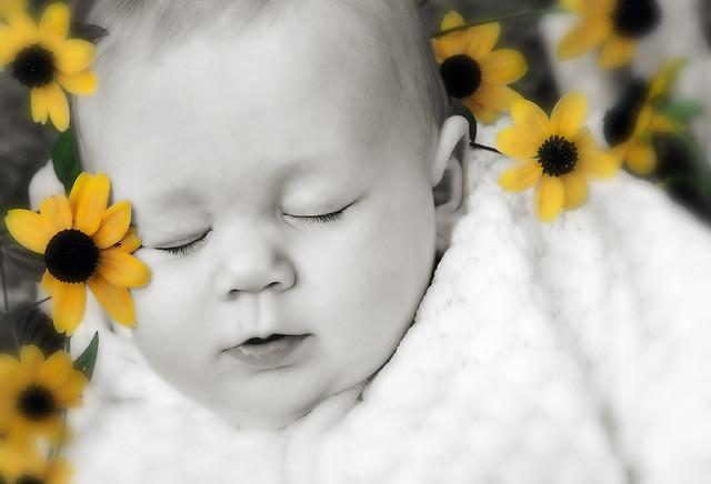 Cute Baby boy in flowers photo