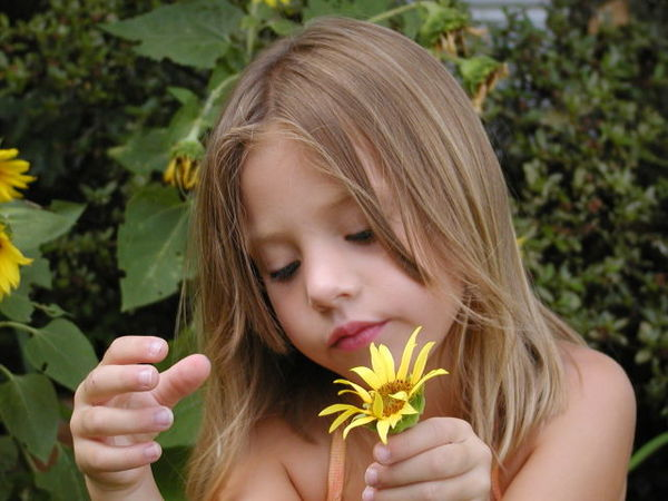 Pictures of Babies With flowers