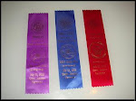 First  AKC ribbons, Vermont, July 08