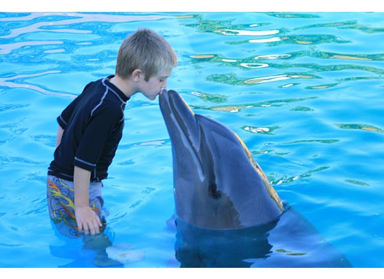 [Ben+kissing+dolphin.htm]