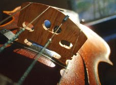 string instrument tuning software for musicians