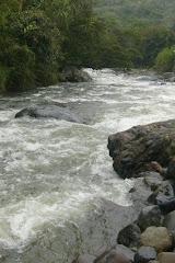 A la Orilla de un río.