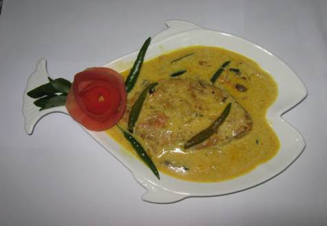 Alltype of fish recipe
