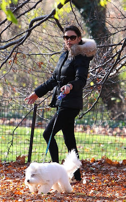 Catherine Zeta-Jones Walking her Dog in Central Park Pics
