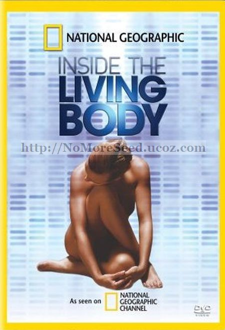 ΤΟ ΑΝΘΡΩΠΙΝΟ ΣΩΜΑ 2ο ΜΕΡΟΣ - Skai.The.Living.Body.E02.DTB.GrLTv
