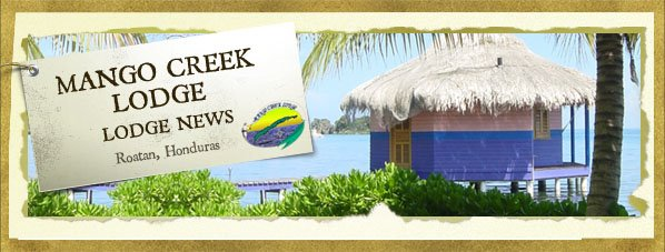 Mango Creek Lodge News
