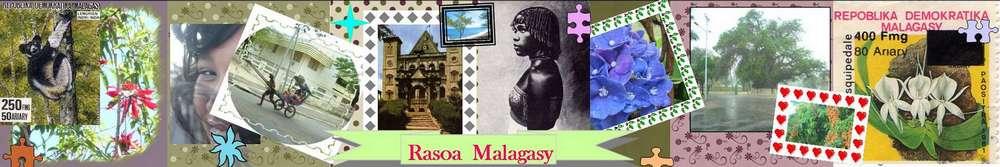 Rasoa Malagasy