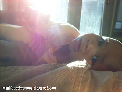 Marlie in the sunlight