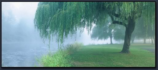 Grannulus' Grove: The Willow Tree, Queen of the Waters